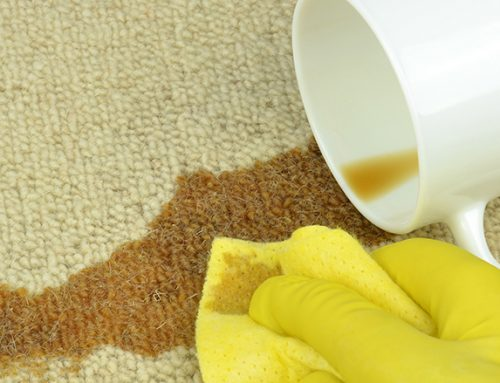 Top 5 Carpet Stain Removal Mistakes